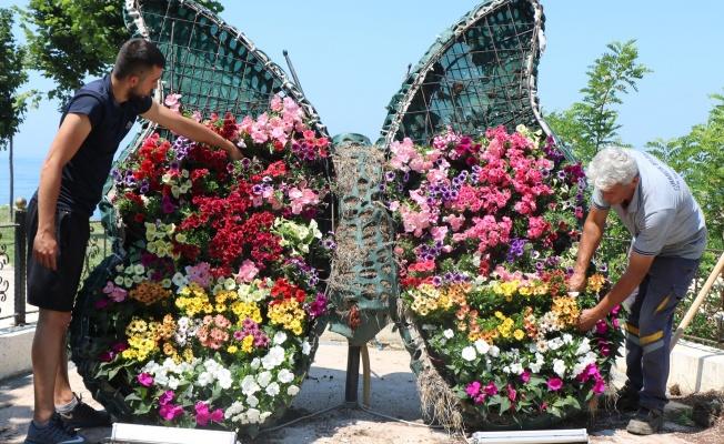 Çınarcık Hatırası 'Kelebek' çiçek açtı