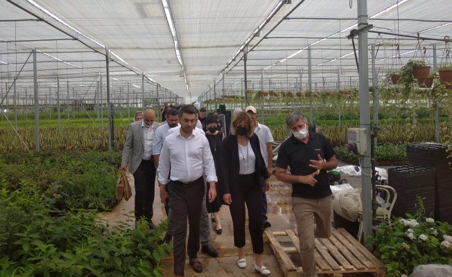 DEVA Partisi Yalova'da esnafı-çiftçiyi dinledi