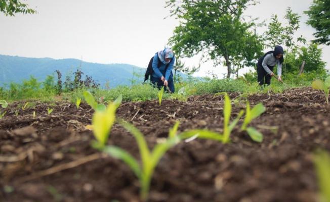 Yalova-Kocaeli hattında kadınları güçlendiren proje