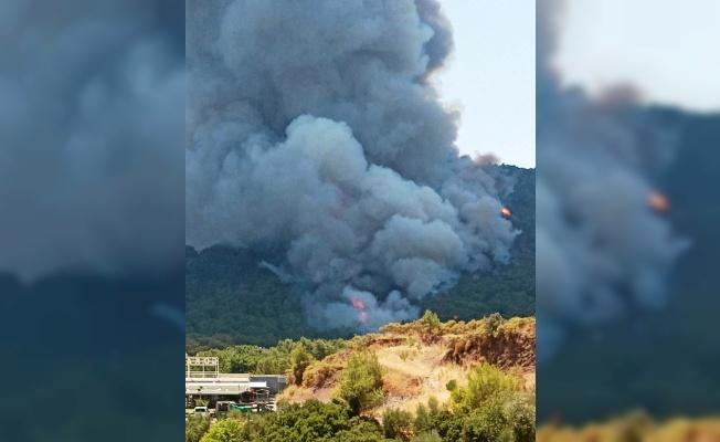 Marmaris'teki yangının ilk anına dair görüntüler ortaya çıktı