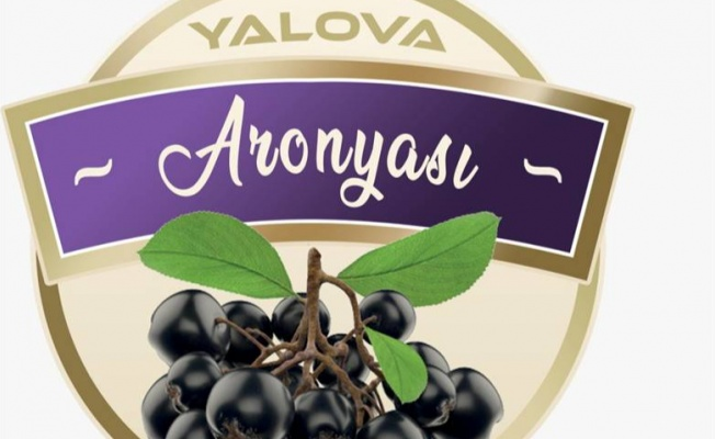 """""""Yalova Aronyası"""" tescillendi"""