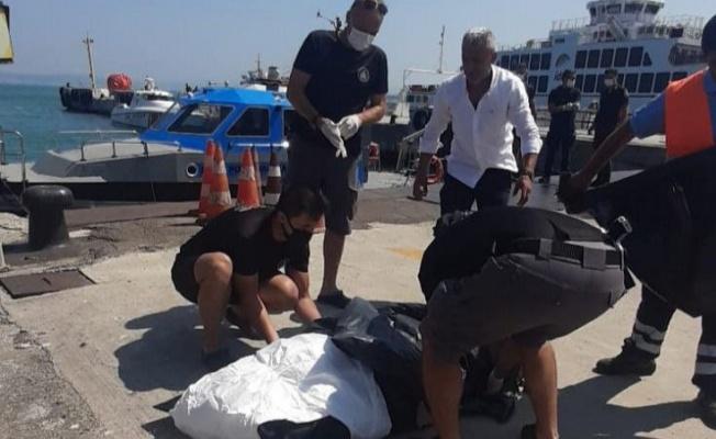 Yalova iskelesinde erkek cesedi bulundu