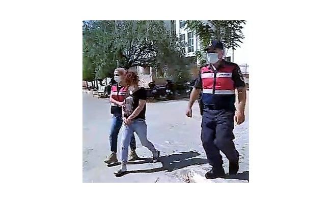 250 kg'lık trafoyu çalmak için 10 metrelik direğe tırmanan kadın yakalandı