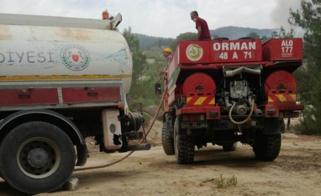 Altınova'dan giden yardım yangın bölgesinde