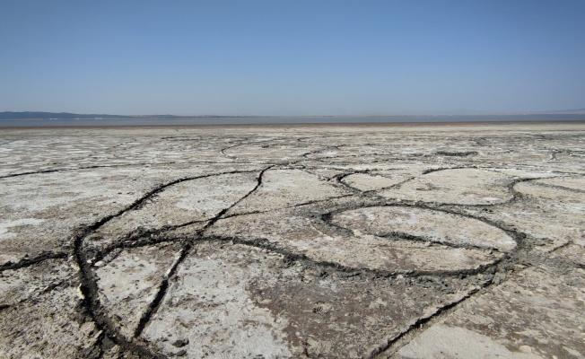 Türkiye'nin ilk, dünyanın ikinci büyük doğal sodyum kaynağı kuruyor