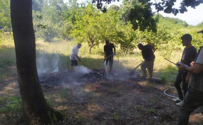 Yalova'da çıkan yangın herkesi korkuttu!