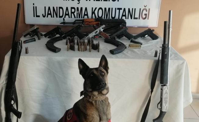 Silah kaçakçılığına geçit yok: 4 gözaltı