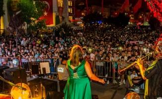 Konserlerden sonra Yalova'da vakalar arttı!