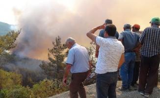 Orman yangını muhtarı gözyaşına boğdu