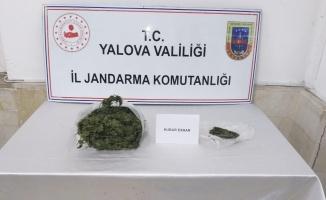 Yalova'da bir kişinin üzerinden 1 kg'a yakın uyuşturucu çıktı